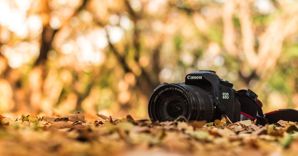 Ремонт фотоаппаратов в городах казахстана это