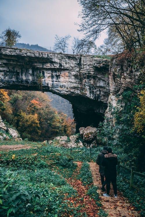 barvy, denní světlo, fotografie přírody