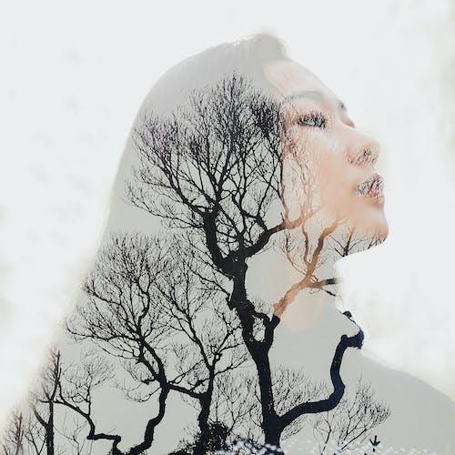 ağaçlar, dişi, genç, Kadın içeren Ücretsiz stok fotoğraf