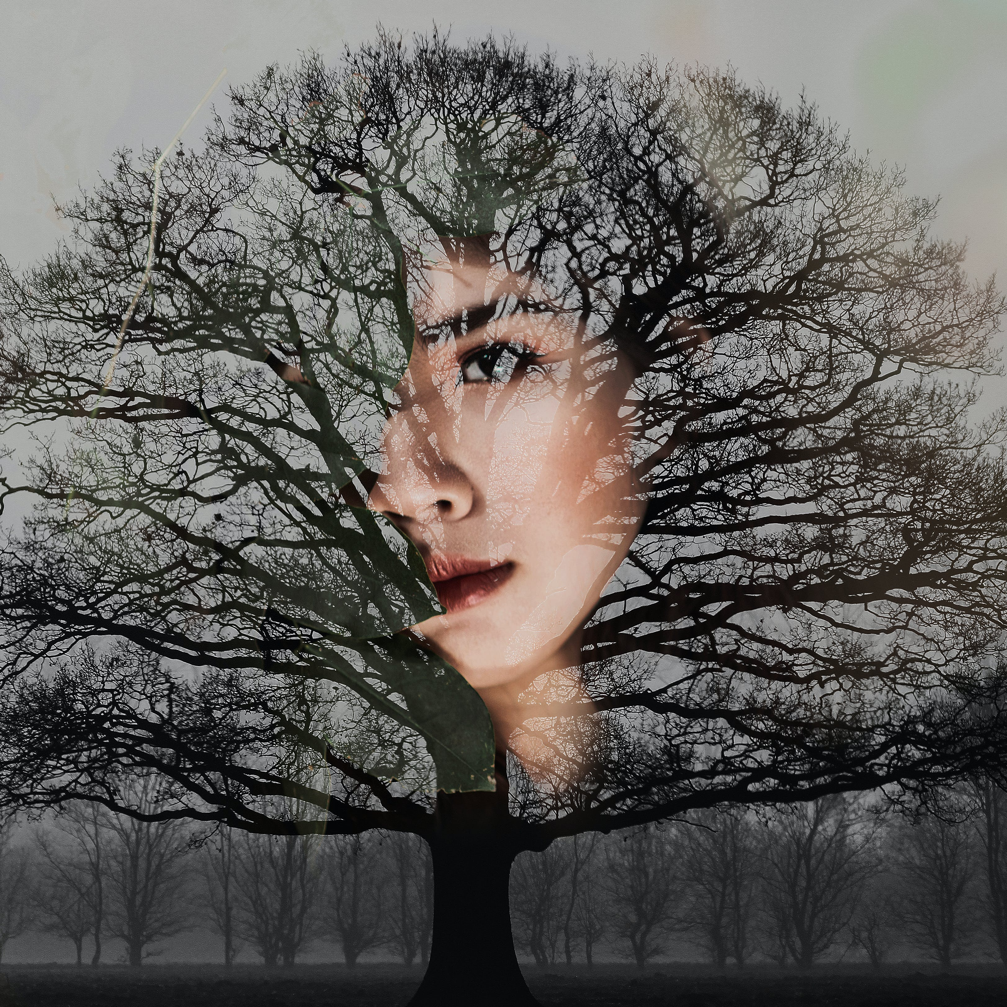Woman's Face With Bare Tree Artwork