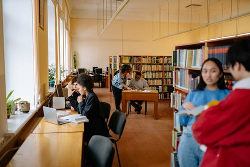 Students Studying Inside the Library