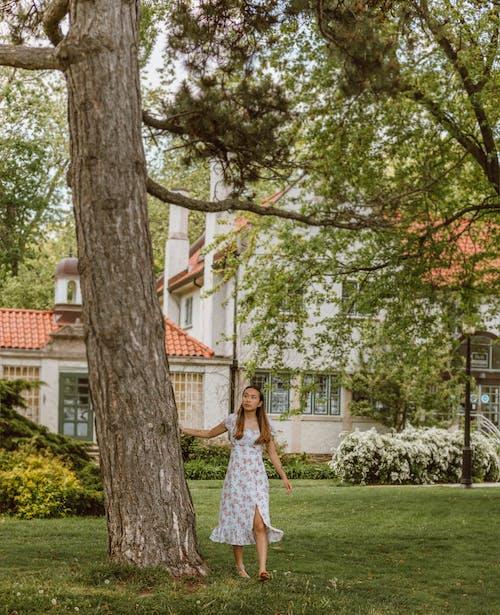 Бесплатное стоковое фото с девочка, девушка, дерево