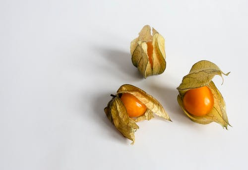 Three Brown Round Fruits on White Surface
