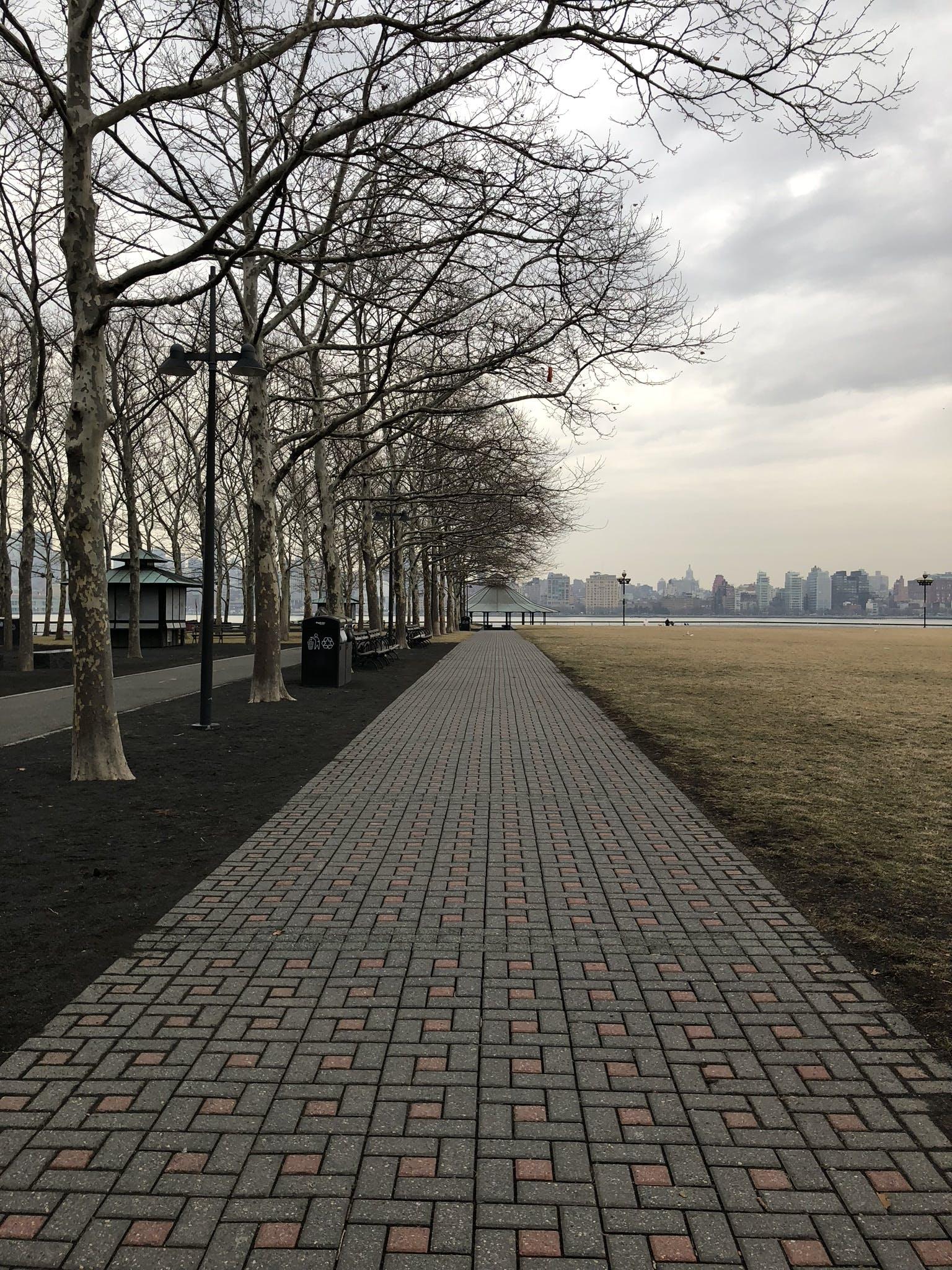 Free stock photo of cloudy, grass, grey, hoboken