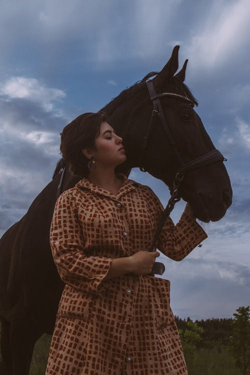 Woman caressing stallion under cloudy sky in evening