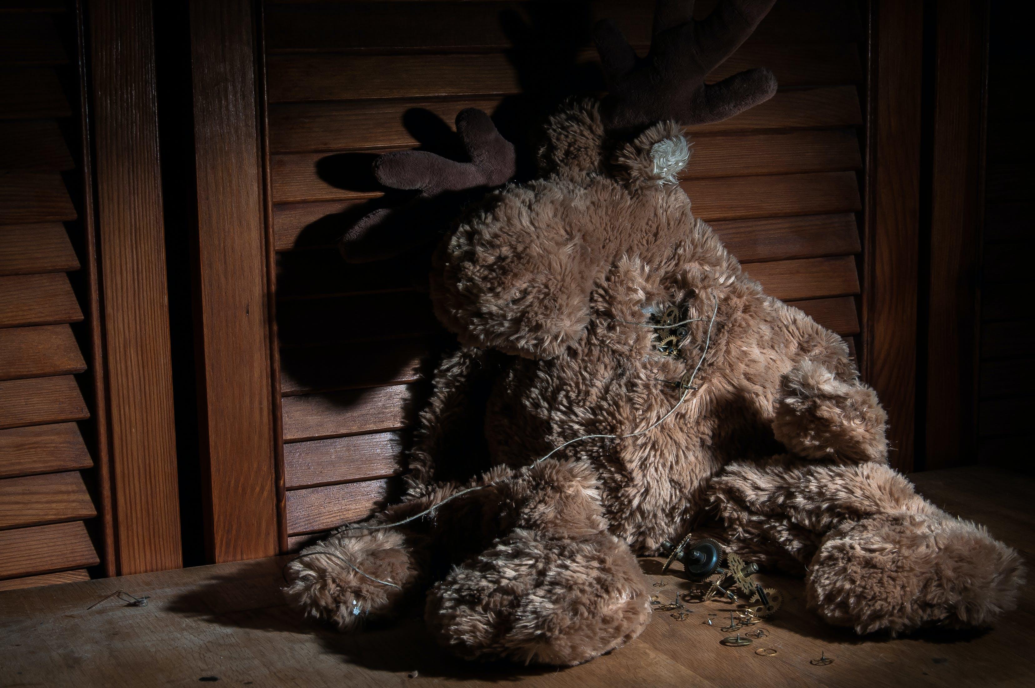 Free stock photo of heart, night, broken, teddy