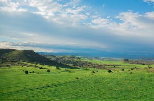 Foto stok gratis alam, awan, bidang