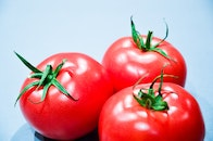 food, red, tomatoes
