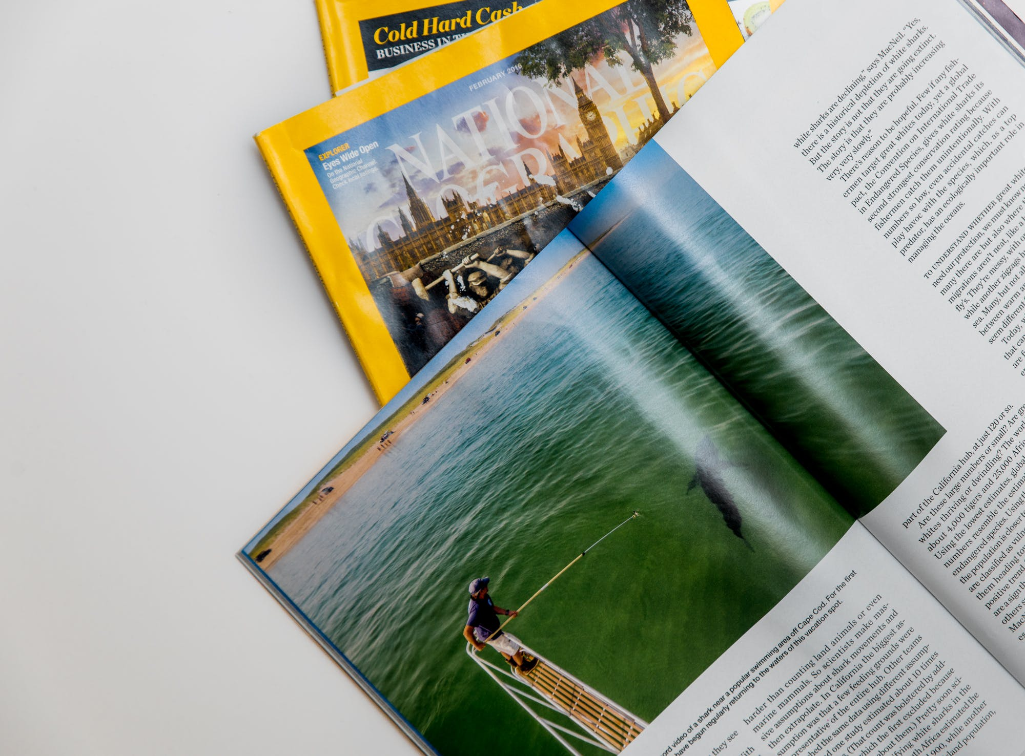 Free stock photo of magazines, table, reading, simple