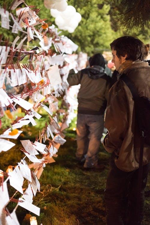 Ingyenes stockfotó dia de los muertos, San Francisco témában