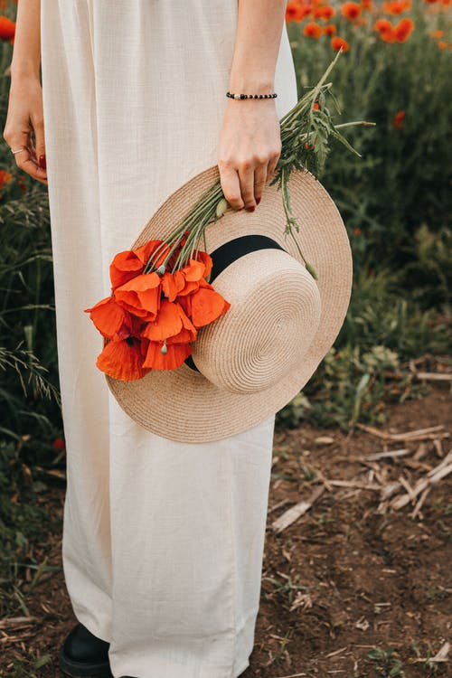 Gratis stockfoto met anoniem, aroma, bloeien