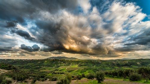Immagine gratuita di alberi, campi, cielo, cielo nuvoloso