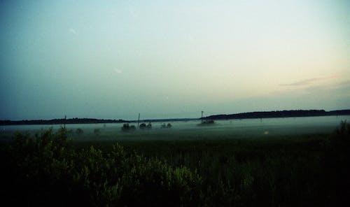 Free stock photo of field, fog, justifyyourlove, mist