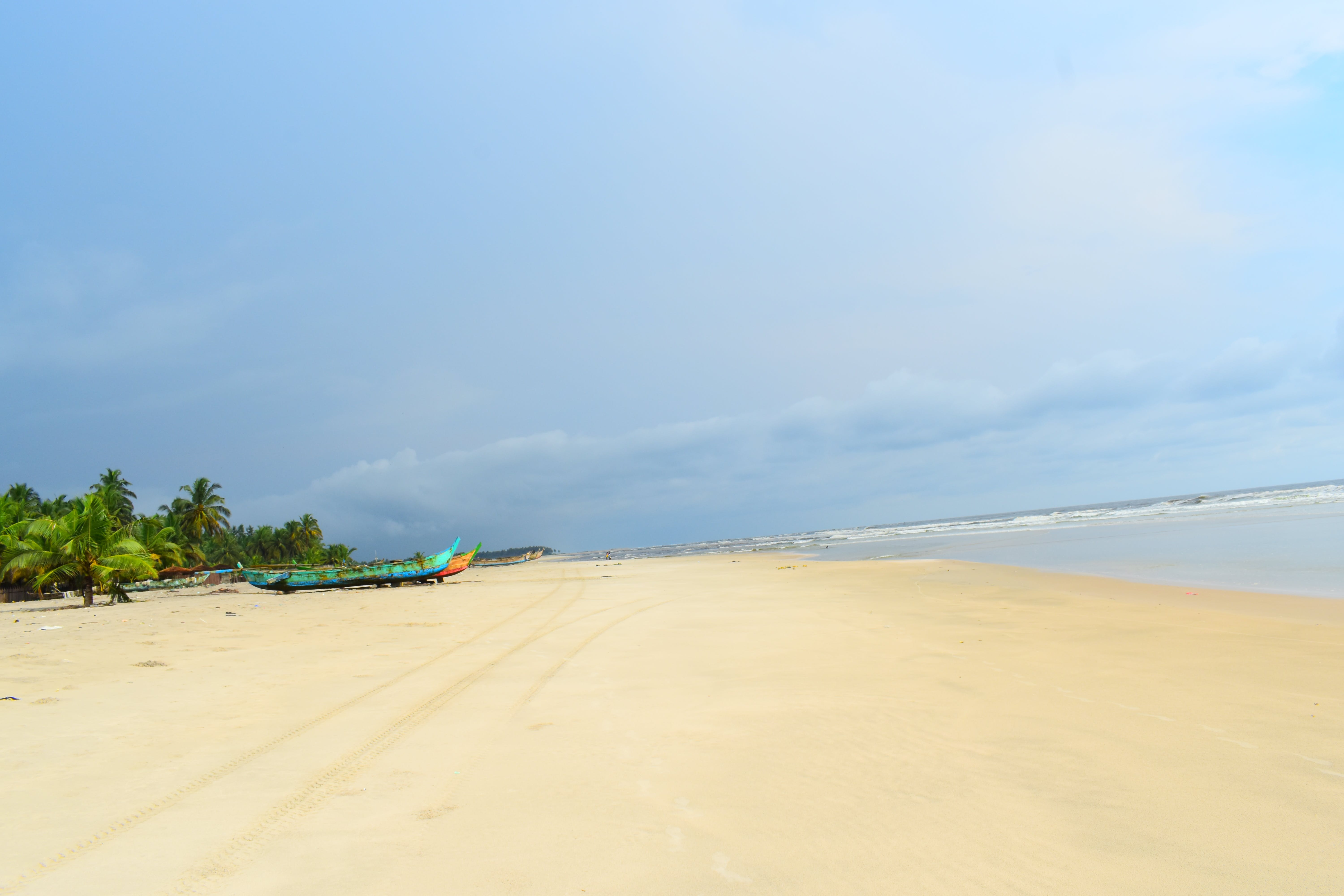 Free stock photo of africa, beach, ciel, cocotier
