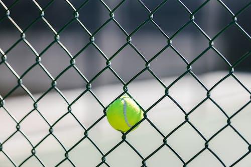 Immagine gratuita di avvicinamento, palla da tennis, recinto di filo metallico
