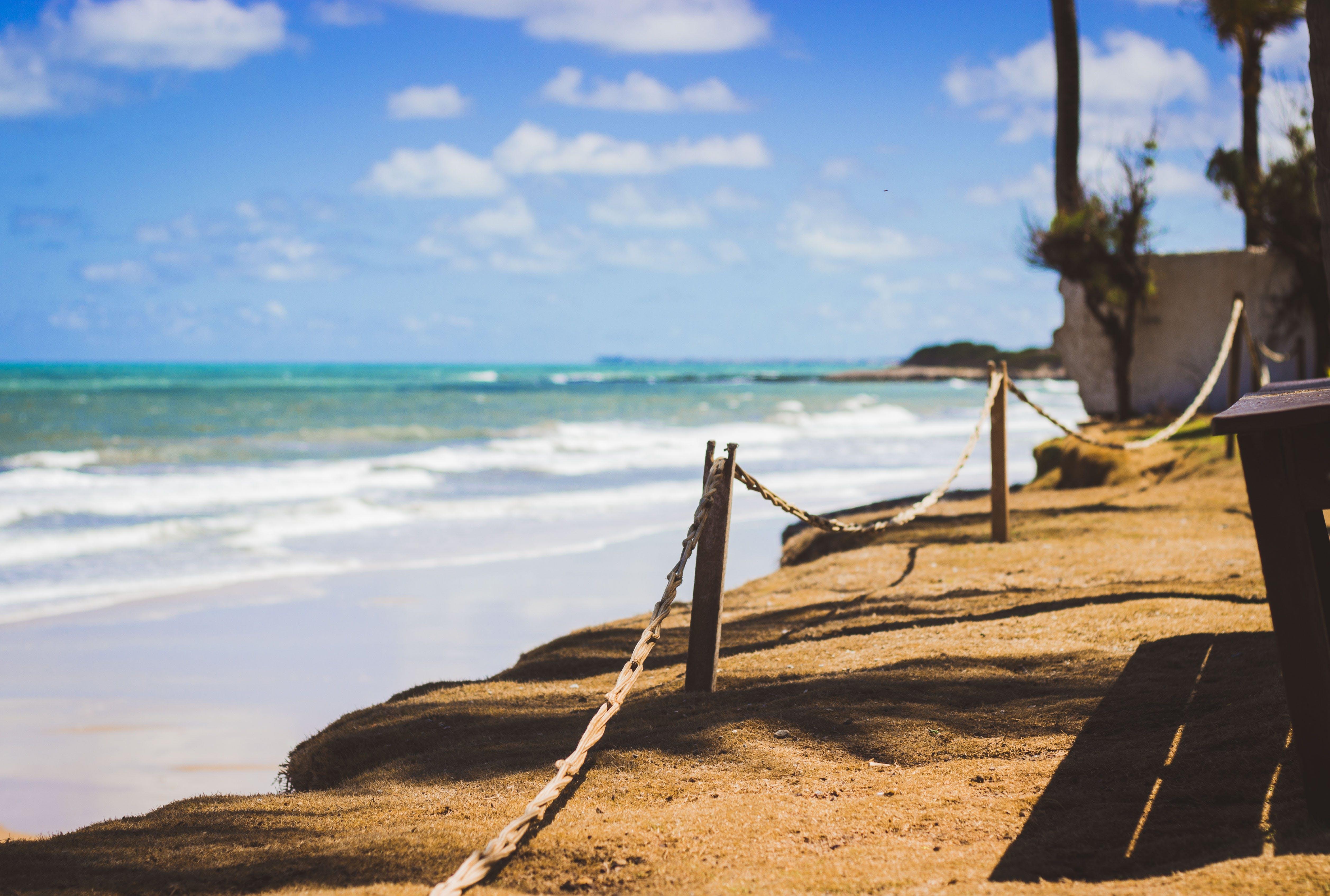 Wooden Posts Near Ocean Water