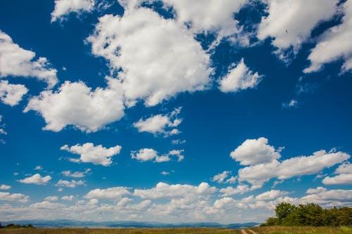 Free stock photo of above clouds, blue skies, wonderful cloud