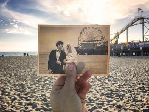 婚禮, 新娘, 新郎, 老式照片 的 免費圖庫相片
