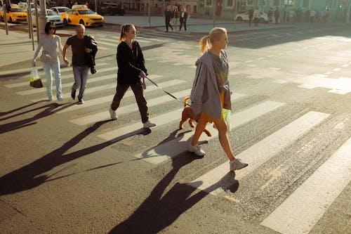Fotos de stock gratuitas de al aire libre, asfalto, calle