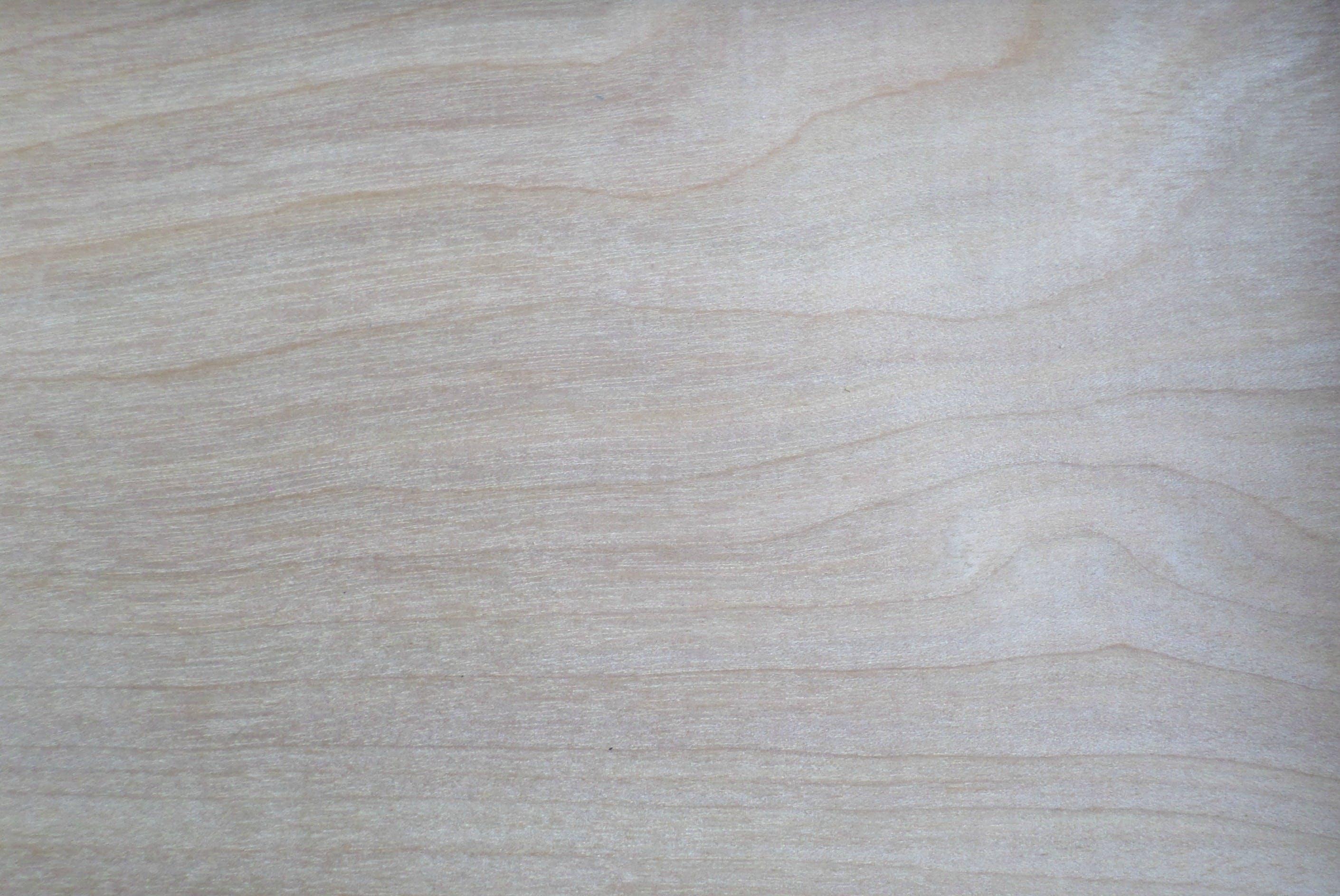 Gratis lagerfoto af baggrund, fyrretræ, tekstur, træ
