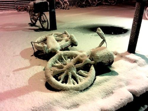 Gratis lagerfoto af deadcity, forkølelse, hvid, japan