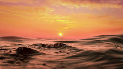 Water Wave during Golden Hour