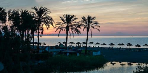 Ingyenes stockfotó banus port, Földközi-tenger, hajnal, marbella témában