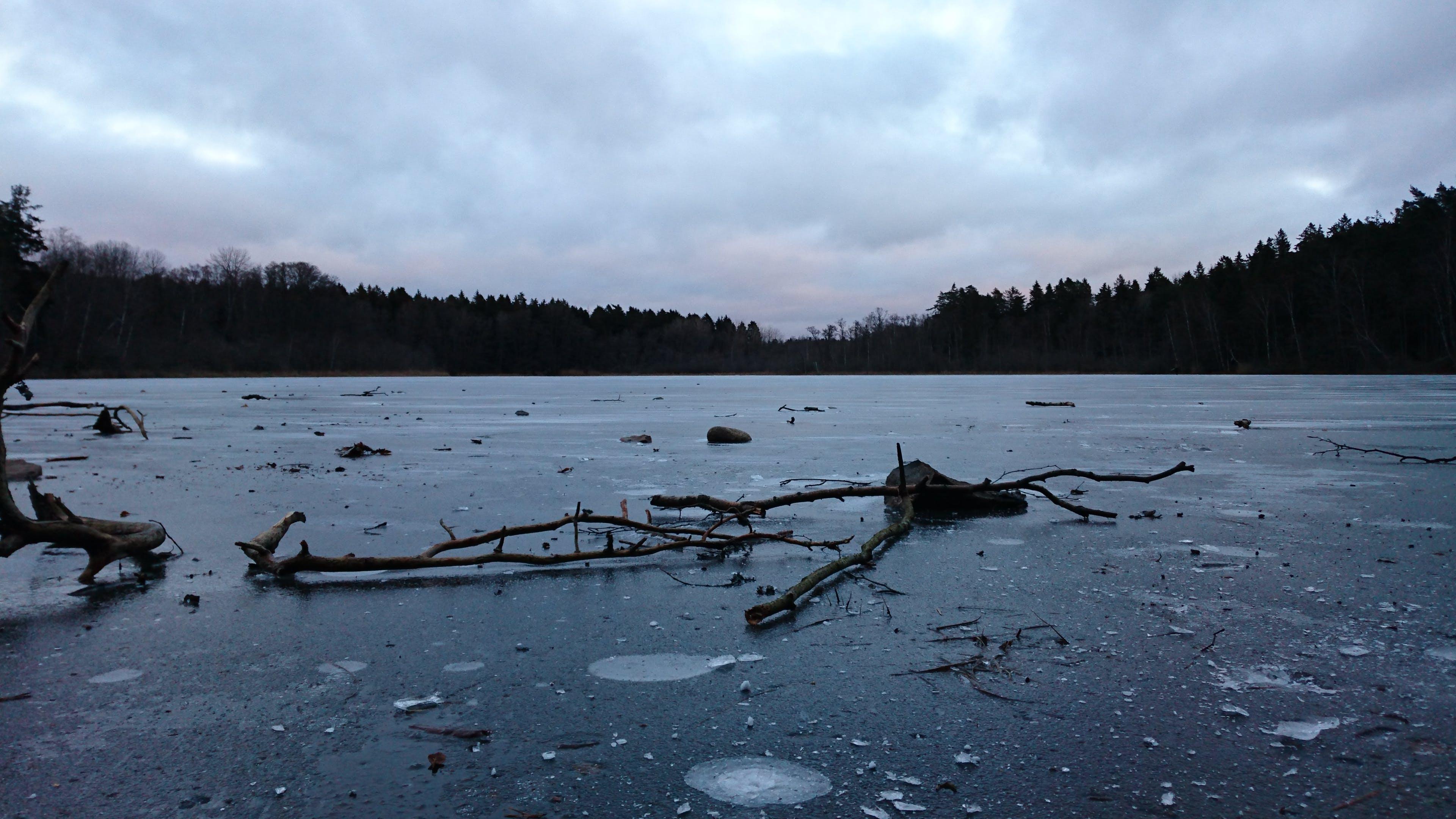Free stock photo of ice, lake