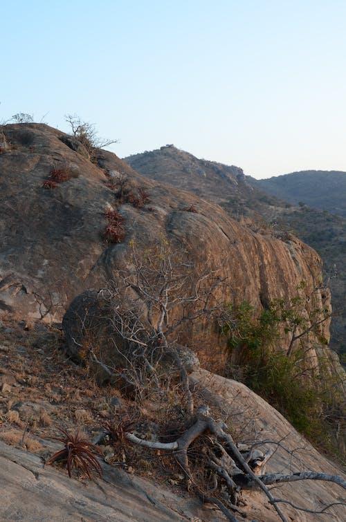 ブッシュベルド, ロックフェイス, 山岳の無料の写真素材