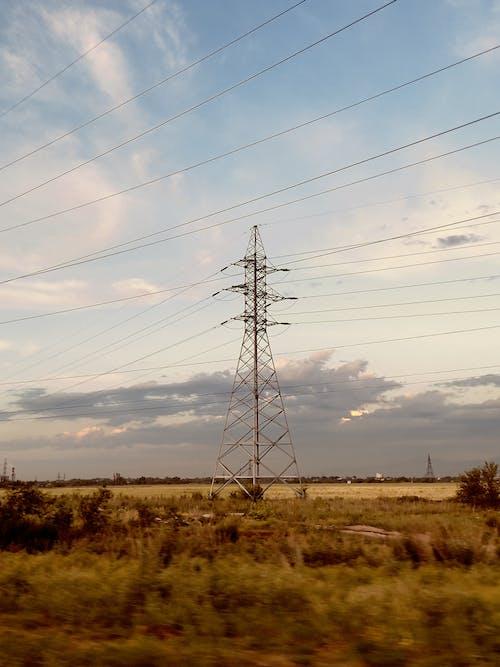 Foto d'estoc gratuïta de almaty, alt voltatge, esten erbol