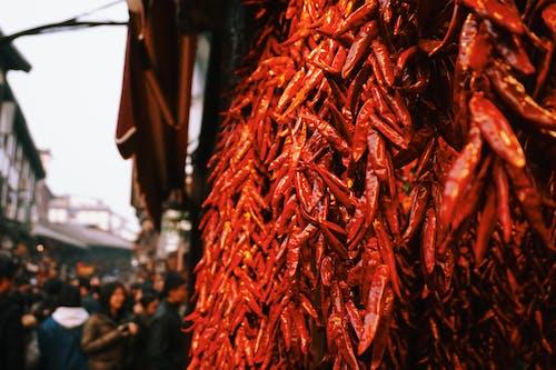 Ingyenes stockfotó chili, emberek, fűszer, homály témában