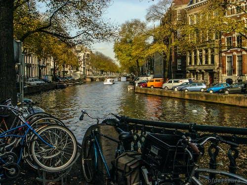 Ingyenes stockfotó járkál amszterdamban témában