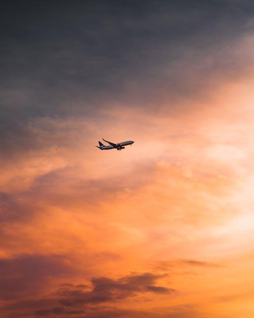 Безкоштовне стокове фото на тему «аеропорт, вечір, Захід сонця»