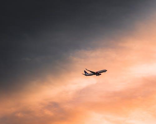 Безкоштовне стокове фото на тему «авіалайнер, Авіація, аеропорт»