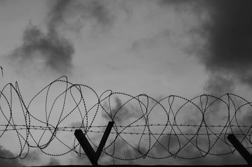 Grayscale Photo of a Barbed Wire Fence
