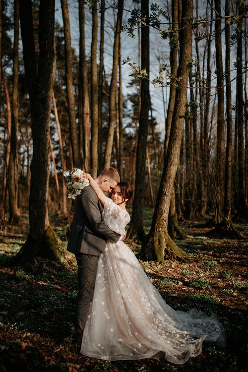 Immagine gratuita di adulto, albero, amore