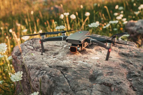 Close-Up Shot of a Drone on a Rock