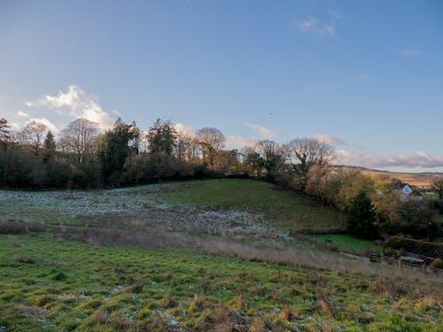 Free stock photo of fields, scene, sky