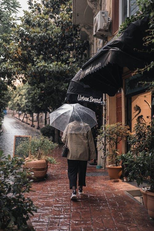 Fotobanka sbezplatnými fotkami na tému architektúra, cestovať, dážď