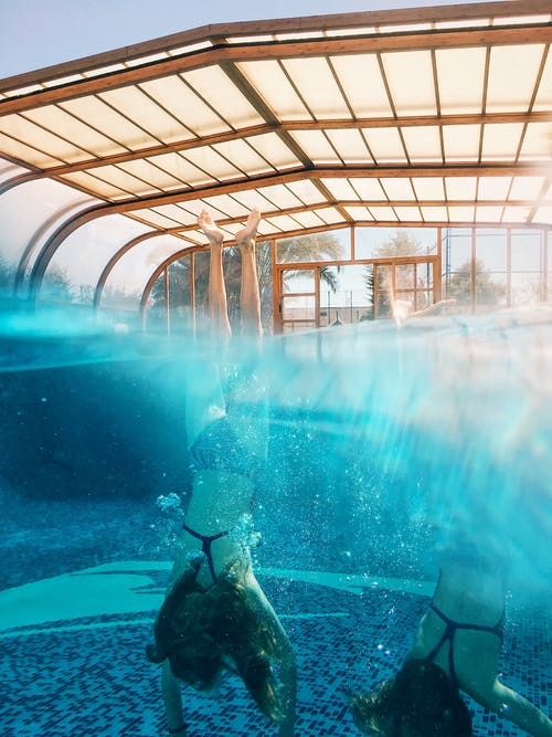 Free stock photo of diving, dug-out pool, fish