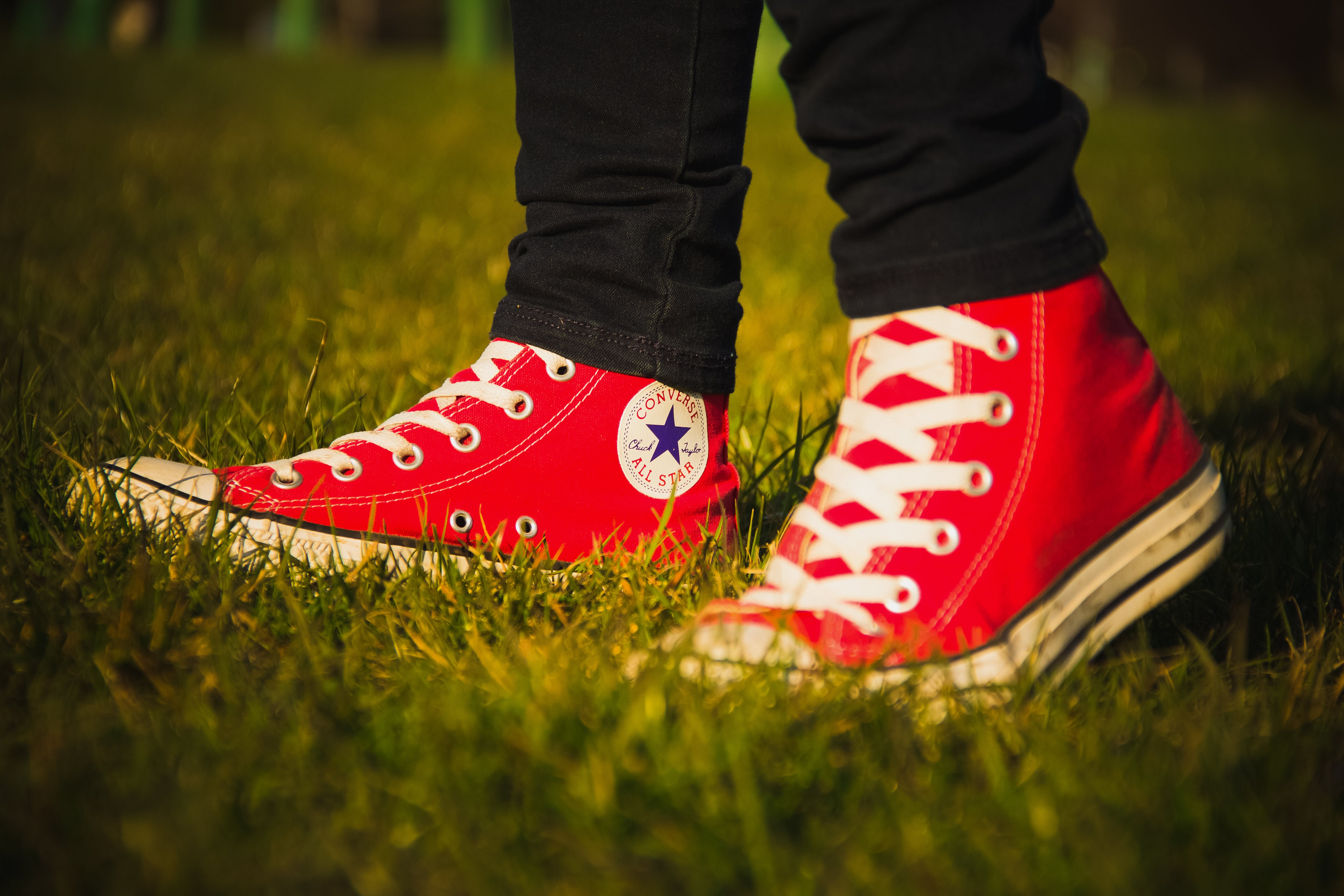 Free stock photo of grass, shoes, logo, converse