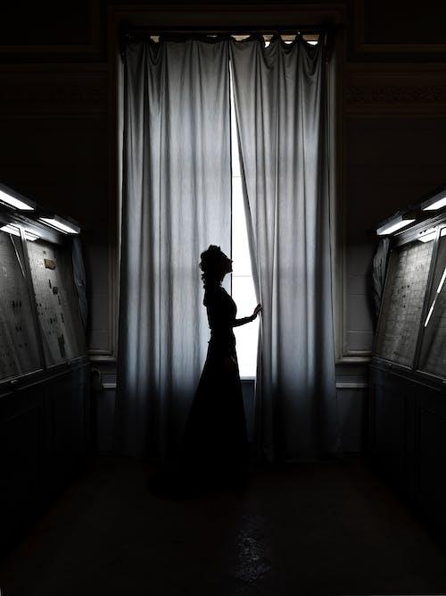 Ingyenes stockfotó ablak, ajtó, álló kép témában