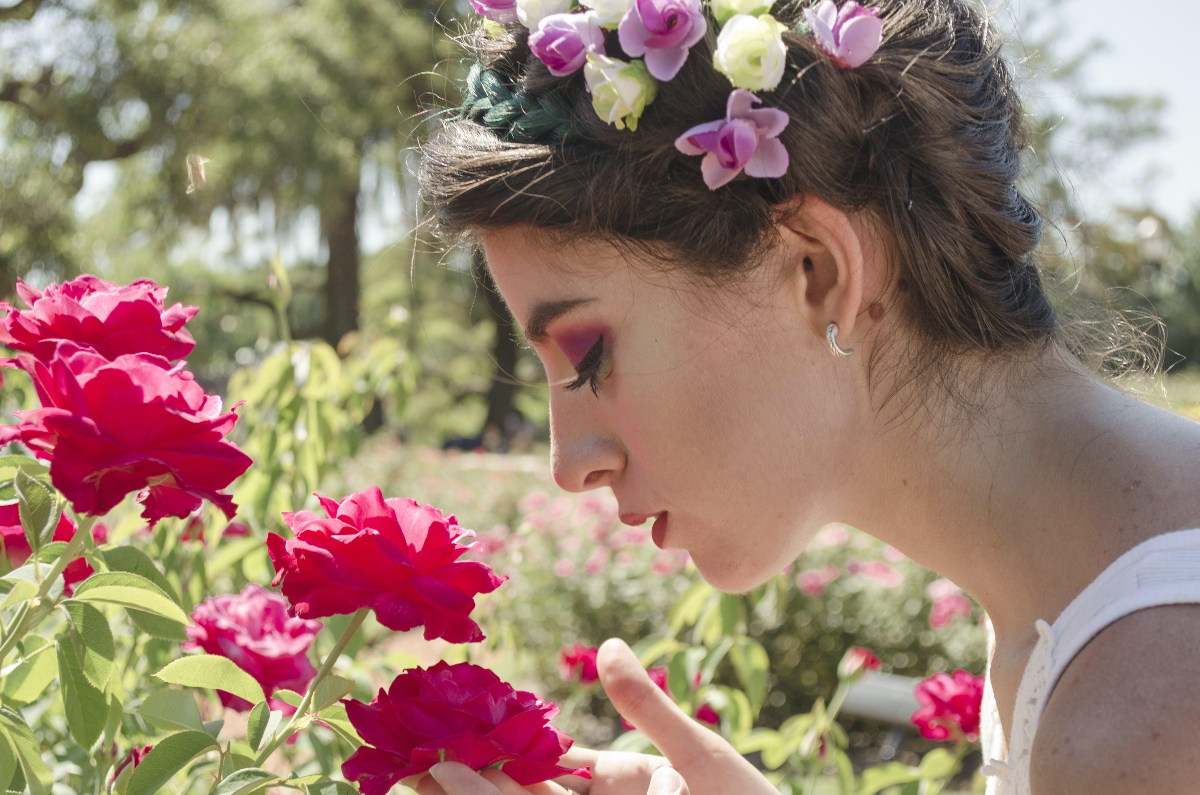 Foto stok gratis bagus, berbau, bunga-bunga, bunga-bunga indah