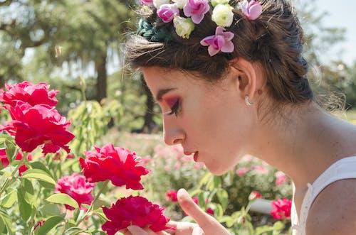 ağaçlar, Bahçe, bitki örtüsü, çiçek taç içeren Ücretsiz stok fotoğraf