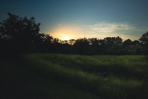 光, 光線, 原本 的 免費圖庫相片
