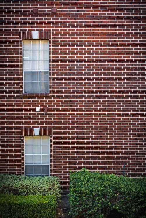 れんが壁, 屋外, 建物の外観の無料の写真素材