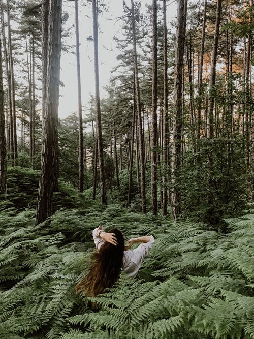 Back view of unrecognizable female with long hair standing among green plants in forest with tall tress in summer