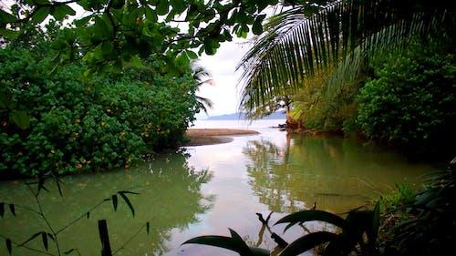 koy, manzara, okyanus, plaj içeren Ücretsiz stok fotoğraf