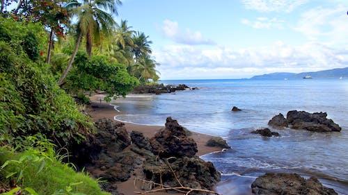天性, 景觀, 沙灘, 海洋 的 免費圖庫相片
