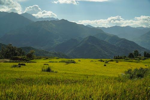 Kostnadsfri bild av åkermark, bergen, dal